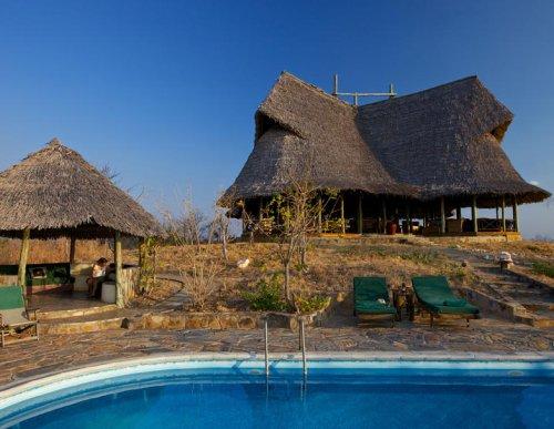 Foxes Stanley's Kopje, Tanzania